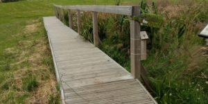 Scholes Lodge Farm Bridge