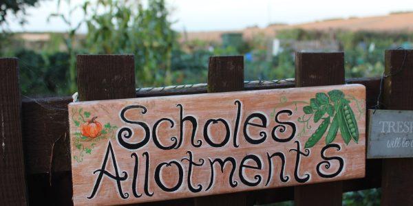 Scholes allotments